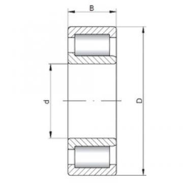 ISO NJF2311 V cylindrical roller bearings