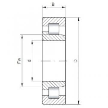 ISO NJ1056 cylindrical roller bearings