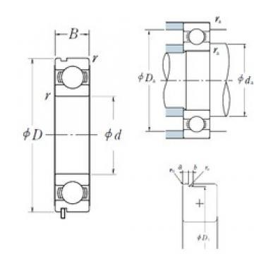 NSK 6310N deep groove ball bearings