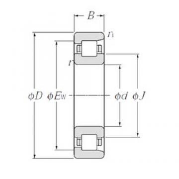 NTN NF338 cylindrical roller bearings